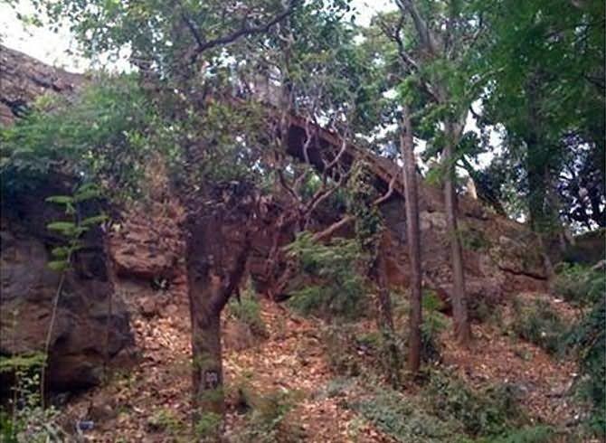 city-regen-malabar-hill-09